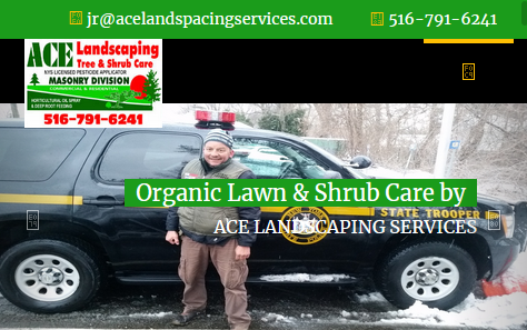www.acelandscapingservices.com/
